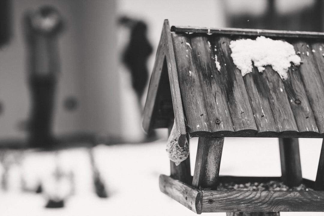 016 zimowa sesja narzeczenska waleriany puszcza marianska