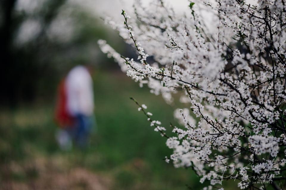 098 sesja narzeczenska kwiaty pruszkow nadarzyn fotograf