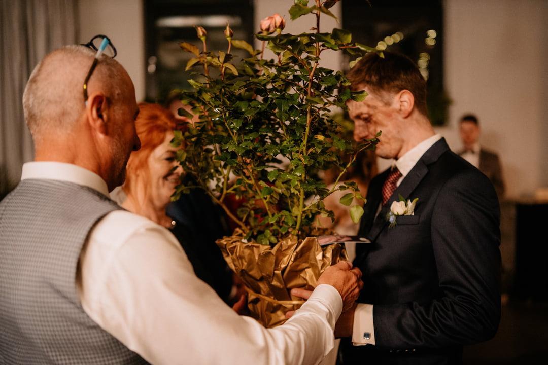podziekowania dla rodzicow krzewy zywych roz